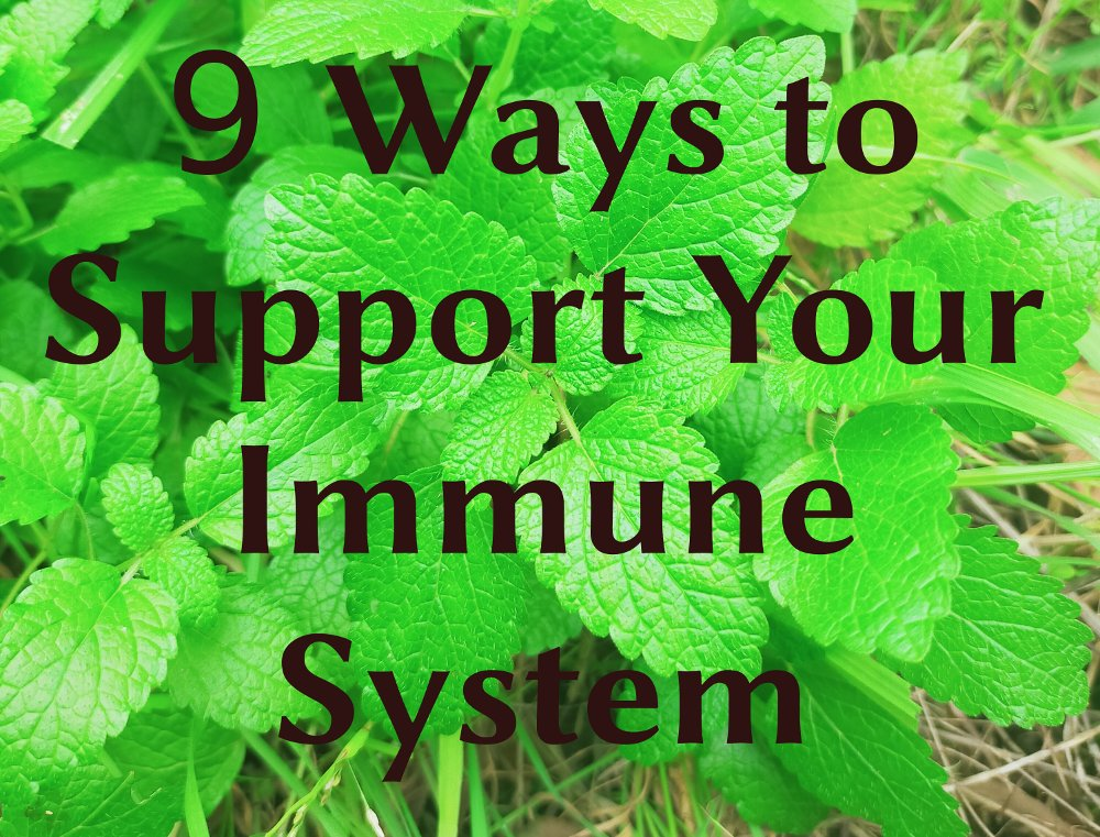 9-ways-to-support-immune-system